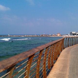 חוף תל-אביב