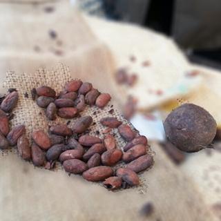 פסטיבל השוקולד
