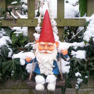 שלג בגינה